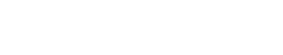 Logo Friedrich-Alexander-Universität Erlangen-Nürnberg