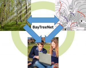 Baytreenet-Dreieck | Baytreenet, FAU