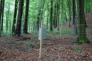 Naturpark Augsburg | Baytreenet, FAU